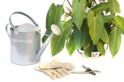 Tijeras de podar y guantes del jardín aislados en blanco Fotografía de archivo libre de regalías