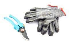 Tijeras de podar y guantes que cultivan un huerto Imagenes de archivo
