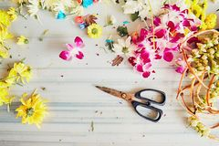 Tijeras en floristería Fotos de archivo