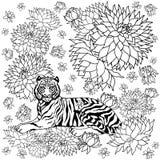 Tijger en bloem van het de illustratieontwerp van het patroon vectorcontrast abstracte de handtekening stock illustratie