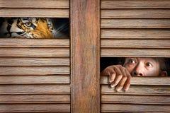 Tijger en menselijk oog in houten gat stock afbeelding