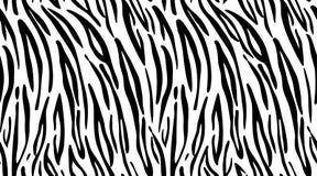 Tijger Patroontextuur die naadloze zwart-wit zwart herhalen & wit Stock Foto