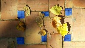 Tijolo decorativo e telhas azuis com folhas de outono fotografia de stock royalty free