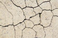 Tijolo rachado do pavimento Fotografia de Stock