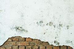 Tijolos alaranjados que espreitam para fora de debaixo de uma parede de descascamento branca parede de tijolo destruída, pintada  fotos de stock