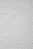Tijolos brancos Fotos de Stock Royalty Free