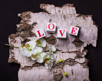 tijolos 3d com as letras que formam o amor da palavra Fotografia de Stock Royalty Free