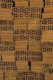 Tijolos da construção Fotos de Stock