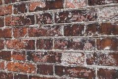 Tijolos dos materiais Foto de Stock