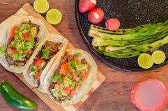 Free Tijuana Tacos, Grilled Carne Asada With Copy Space Royalty Free Stock Photos - 149207418