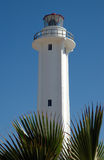 TijuanaLighthouse. Tijuana lighthouse with Palm branches in front, against blue sky Royalty Free Stock Photos