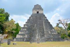 Tikal国家公园 免版税库存照片