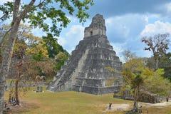 Tikal国家公园 免版税图库摄影