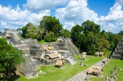 tikal的危地马拉 免版税库存图片