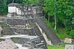 Tikal金字塔在危地马拉 免版税库存照片
