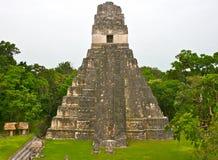Tikal金字塔在危地马拉 库存图片