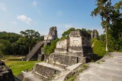 Tikal fotos de stock
