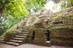 Tikal fotografie stock