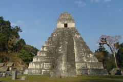 Tikal Royalty Free Stock Photos