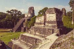 Tikal fotos de stock royalty free