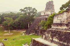 Tikal imagens de stock royalty free