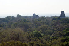 Tikal Royalty Free Stock Photo