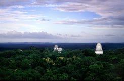 Tikal Imagem de Stock