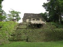 Tikal Imagenes de archivo