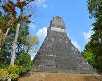 Tikal Imagen de archivo
