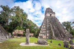 Tikal стоковая фотография rf