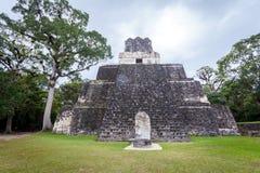 Tikal immagini stock libere da diritti