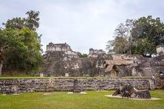Tikal fotografia stock libera da diritti