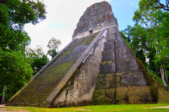 Tikal Ancient Maya Temple, Guatemala Royalty Free Stock Photo