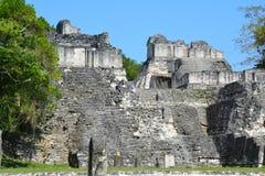 Tikal Archeologische Plaats in Guatemala royalty-vrije stock fotografie