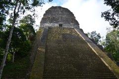 Tikal Archeologische Plaats in Guatemala stock afbeeldingen