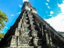Tikal fördärvar Guatemala, den stora Jaguar templet Arkivfoton
