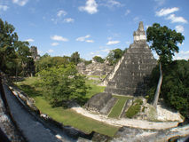 Tikal - grande pátio Imagem de Stock Royalty Free