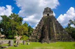 Tikal Guatemala Fotografia Stock