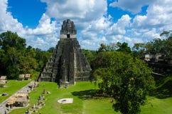 Tikal Guatemala Imagens de Stock