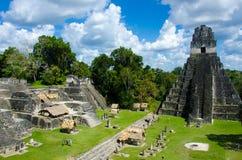 Tikal Guatemala Fotos de Stock