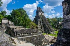 Tikal Guatemala Fotografia de Stock Royalty Free