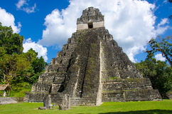 Tikal Guatemala Imagem de Stock Royalty Free