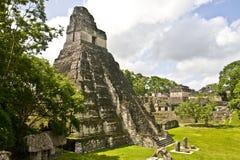 Tikal, Guatemala, America Centrale immagini stock libere da diritti