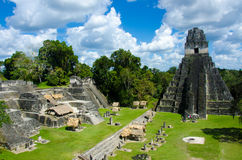 Tikal Guatemala Royalty Free Stock Images
