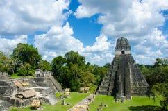 Tikal Guatemala Royalty Free Stock Photo
