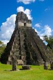 Tikal Guatemala royalty free stock images