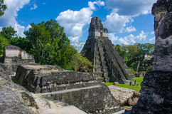 Tikal Guatemala Royalty Free Stock Photography