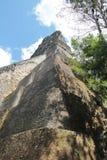 Tikal Guatemala: Tempel V, en av de viktiga pyramiderna (57 meter Arkivfoto