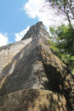 Tikal, Guatemala: Temple V, one of the major pyramids (57 metre stock photo