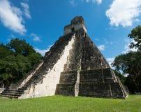 Tikal Mayan Ruïnes, de Reis van Guatemala stock foto's